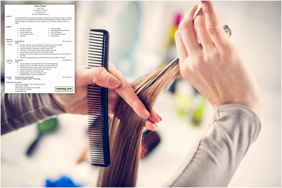 Creative Hair Stylist Resume Templates Best Of Hairstylist Apprentice Resume Examples