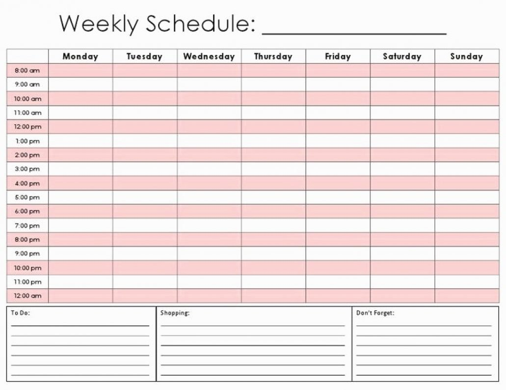 Daily Hourly Schedule Template Lovely Printable Calendar by Hour