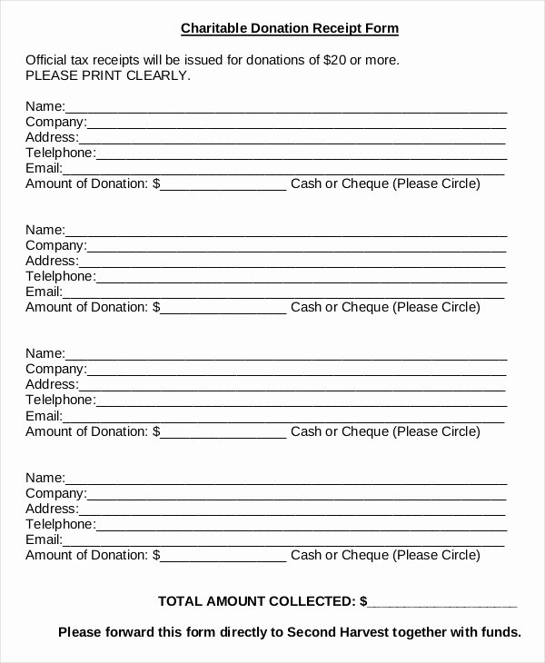Donation Pledge form Template Luxury Charitable Donation form Template