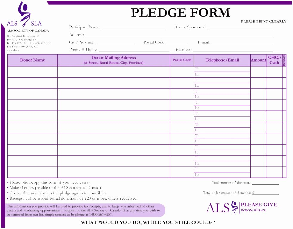 Donation Pledge form Template New 9 Charity Pledge form Template Dtauw
