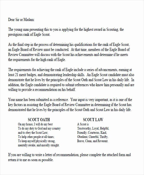 Eagle Scout Reference Letter Template New 12 Sample Eagle Scout Re Mendation Letter Templates