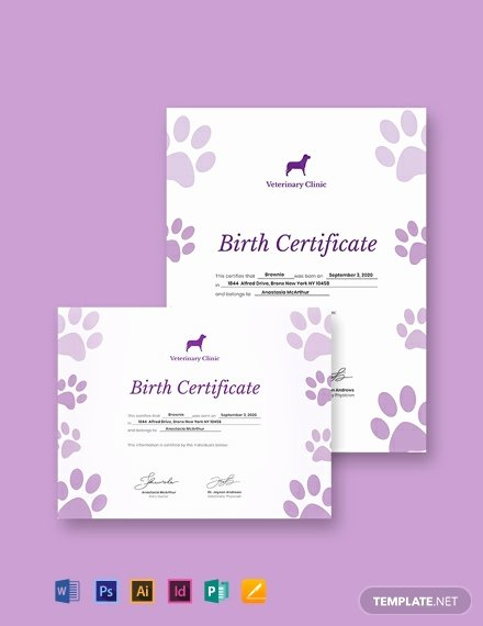 Editable Birth Certificate Template Fresh Free Animal Birth Certificate Template Download 435