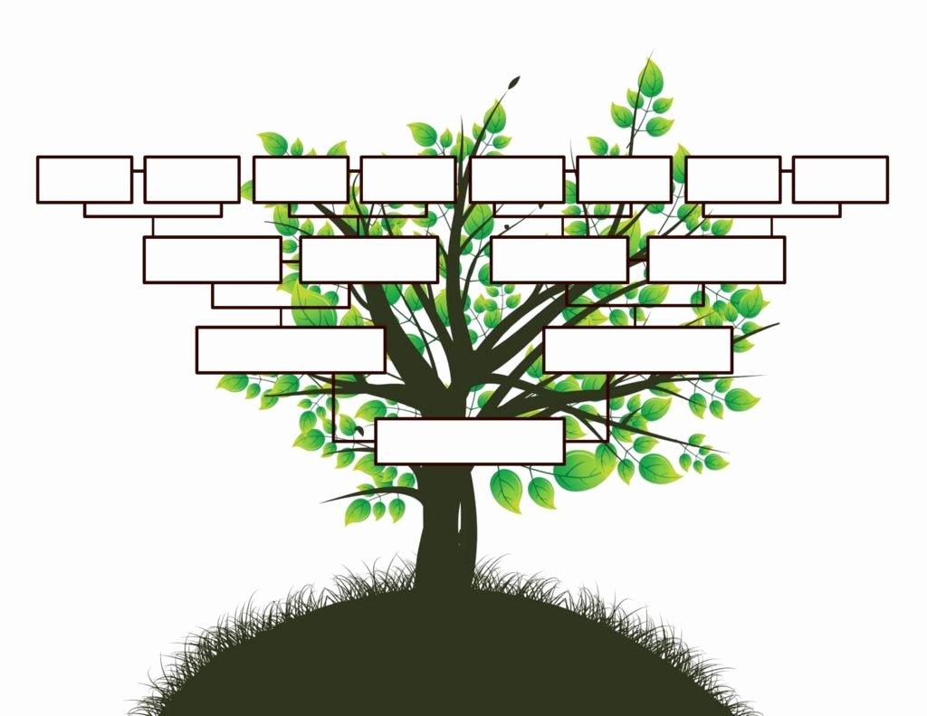 Editable Family Tree Template Word Inspirational Free Editable Family Tree Template Daily Roabox
