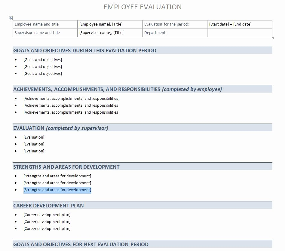 Employee Evaluation Template Word Inspirational Performance Evaluation Template