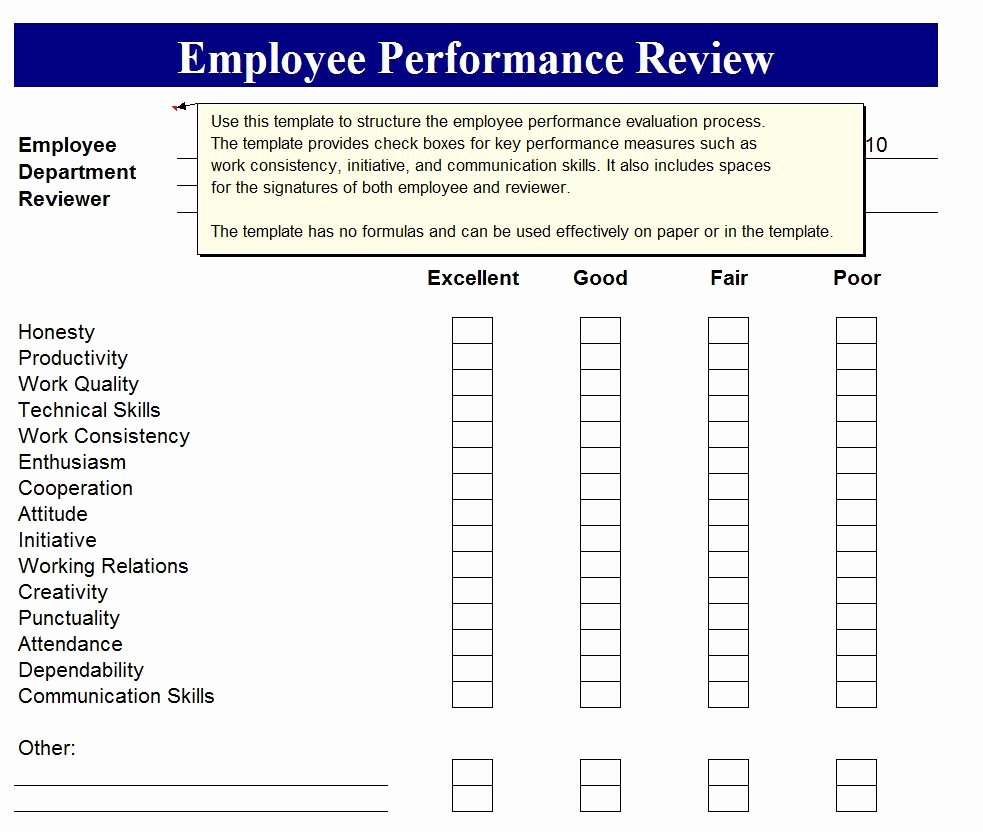 employee performance review