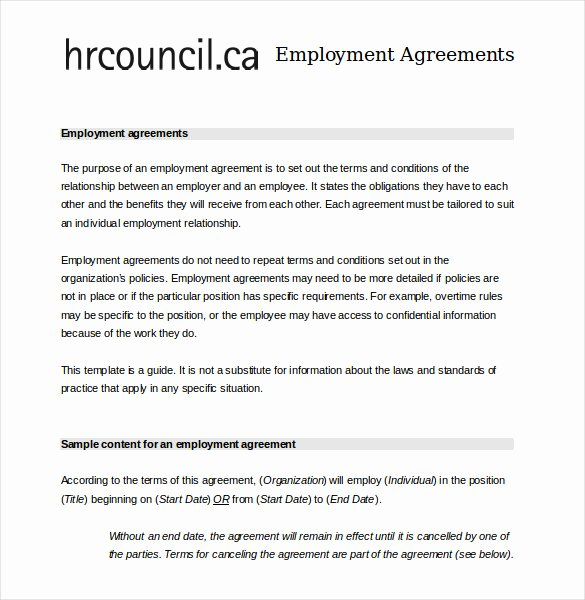Employment Agreement Template Word Luxury 24 Employee Agreement Templates – Word Pdf Apple Pages