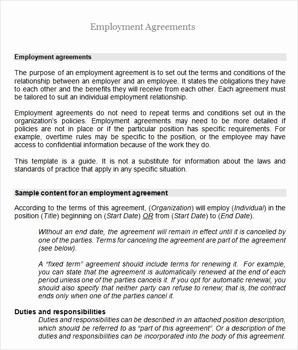 Employment Contract Template Word Lovely Sample Employment Agreement 8 Free Documents Download