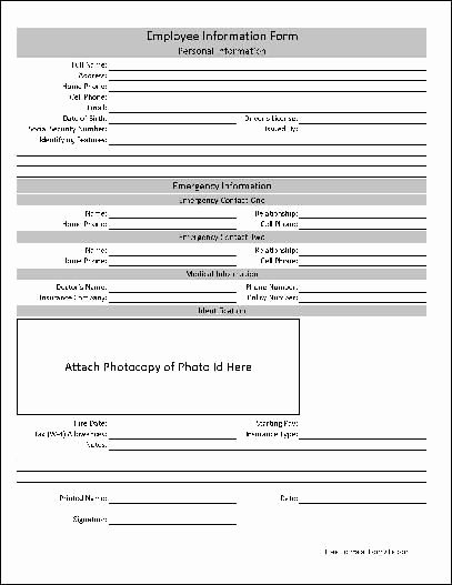 Employment Information form Template Beautiful Free Basic Employee Information form Hr