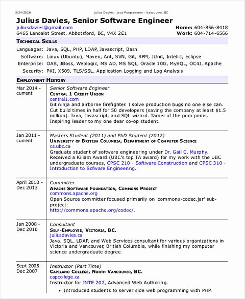 Engineer Resume Template Word Elegant software Engineer Resume Sample and Tips