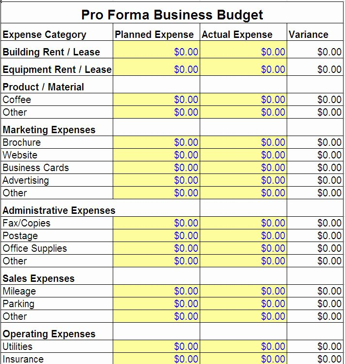 Excel Business Budget Template Beautiful Pro forma Business Bud Template
