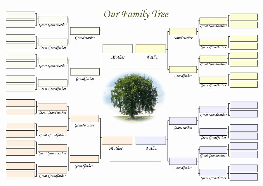 Excel Family Tree Templates Lovely 50 Free Family Tree Templates Word Excel Pdf