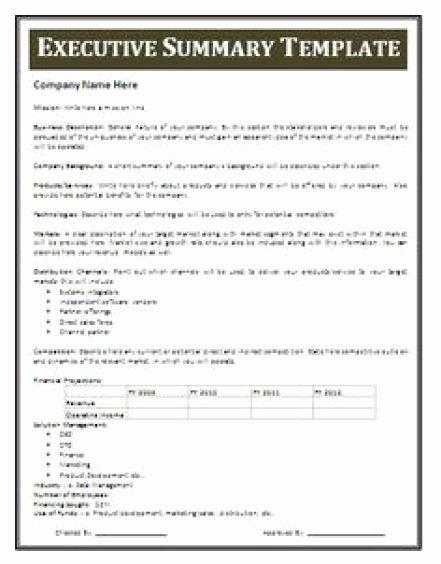 Executive Summary Template Microsoft Word Elegant 13 Executive Summary Templates Excel Pdf formats