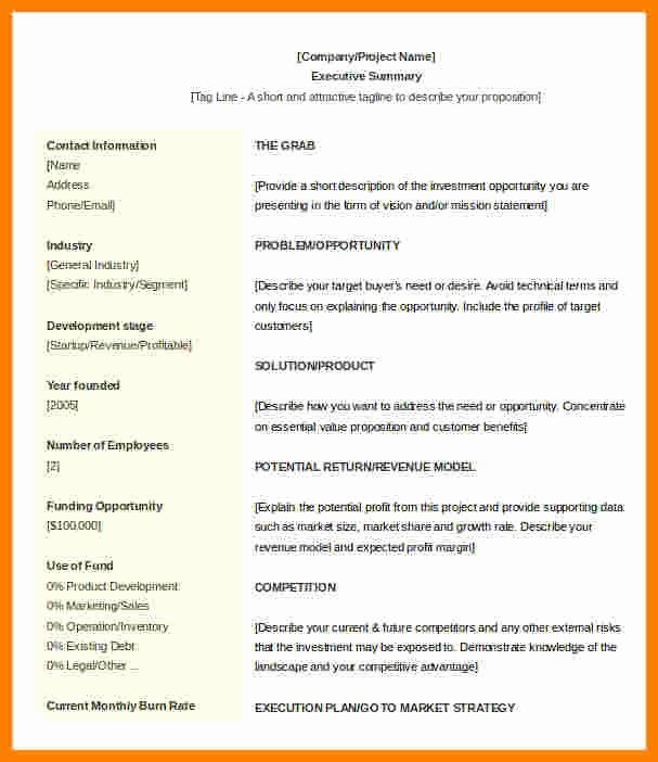 Executive Summary Template Microsoft Word Fresh 5 Executive Summary Template Microsoft Word