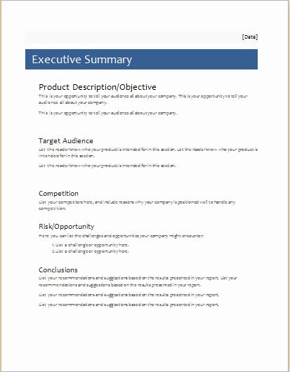 Executive Summary Template Microsoft Word Fresh Executive Summary Template for Ms Word
