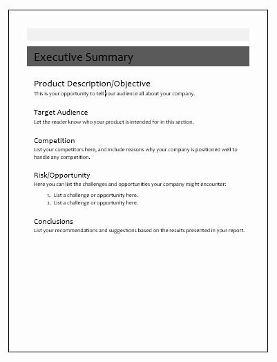 Executive Summary Template Microsoft Word Luxury 2 Executive Summary Templates