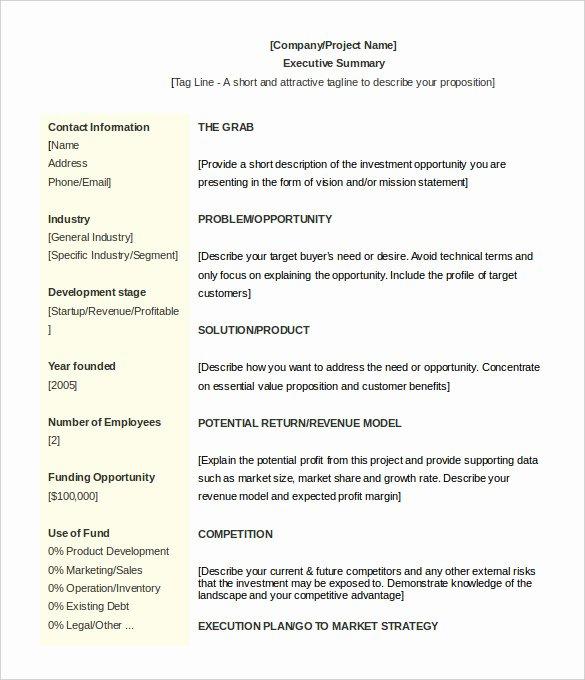 Executive Summary Template Microsoft Word Luxury 31 Executive Summary Templates Free Sample Example