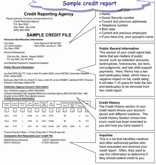 Fake Credit Report Template Elegant Credit Report Template Free Printable Documents