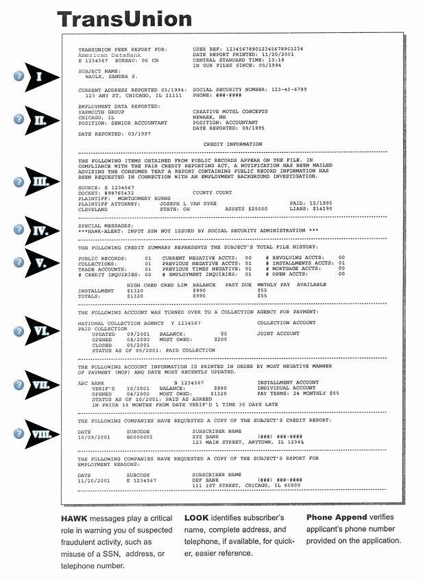 Fake Credit Report Template Inspirational Credit Report Sample Equifax Credit Report Pdf Credit