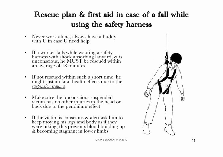 Fall Protection Plan Template Inspirational Safety Harness Fall Protection Wessam atif