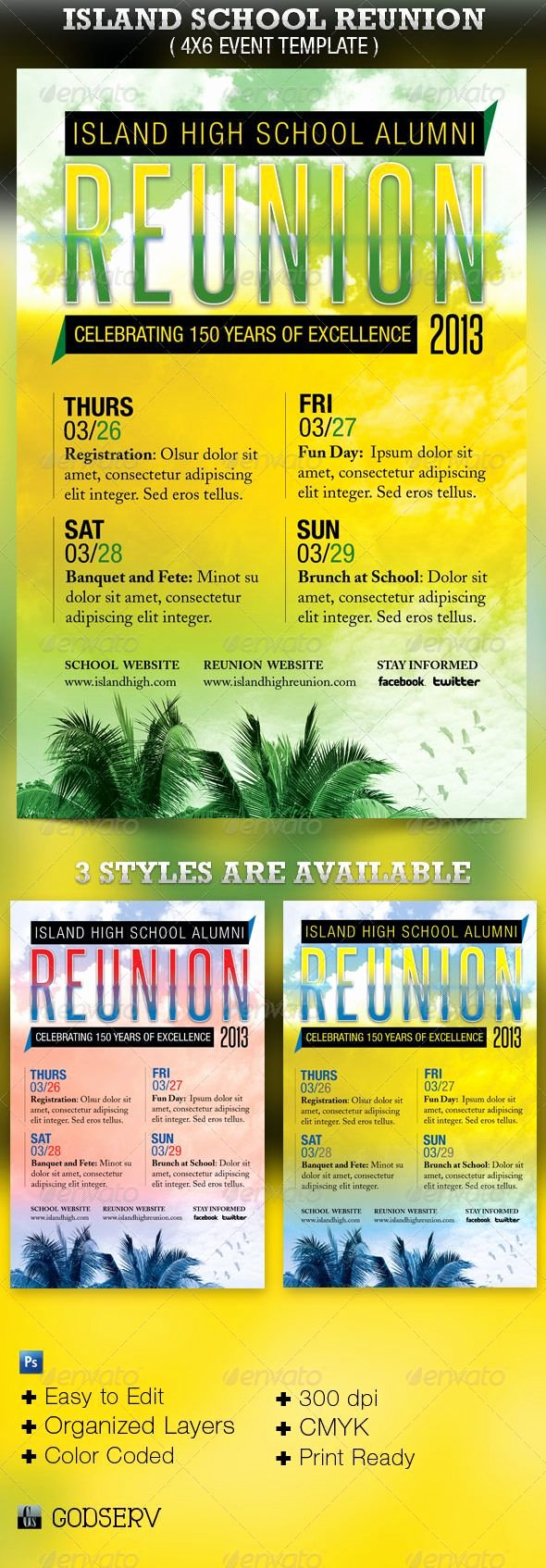 Family Reunion Flyer Templates Lovely island School Reunion Flyer Template $6 00