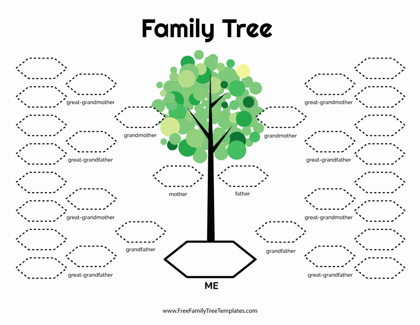 Family Tree Template Free Elegant 5 Generation Family Tree Template – Free Family Tree Templates