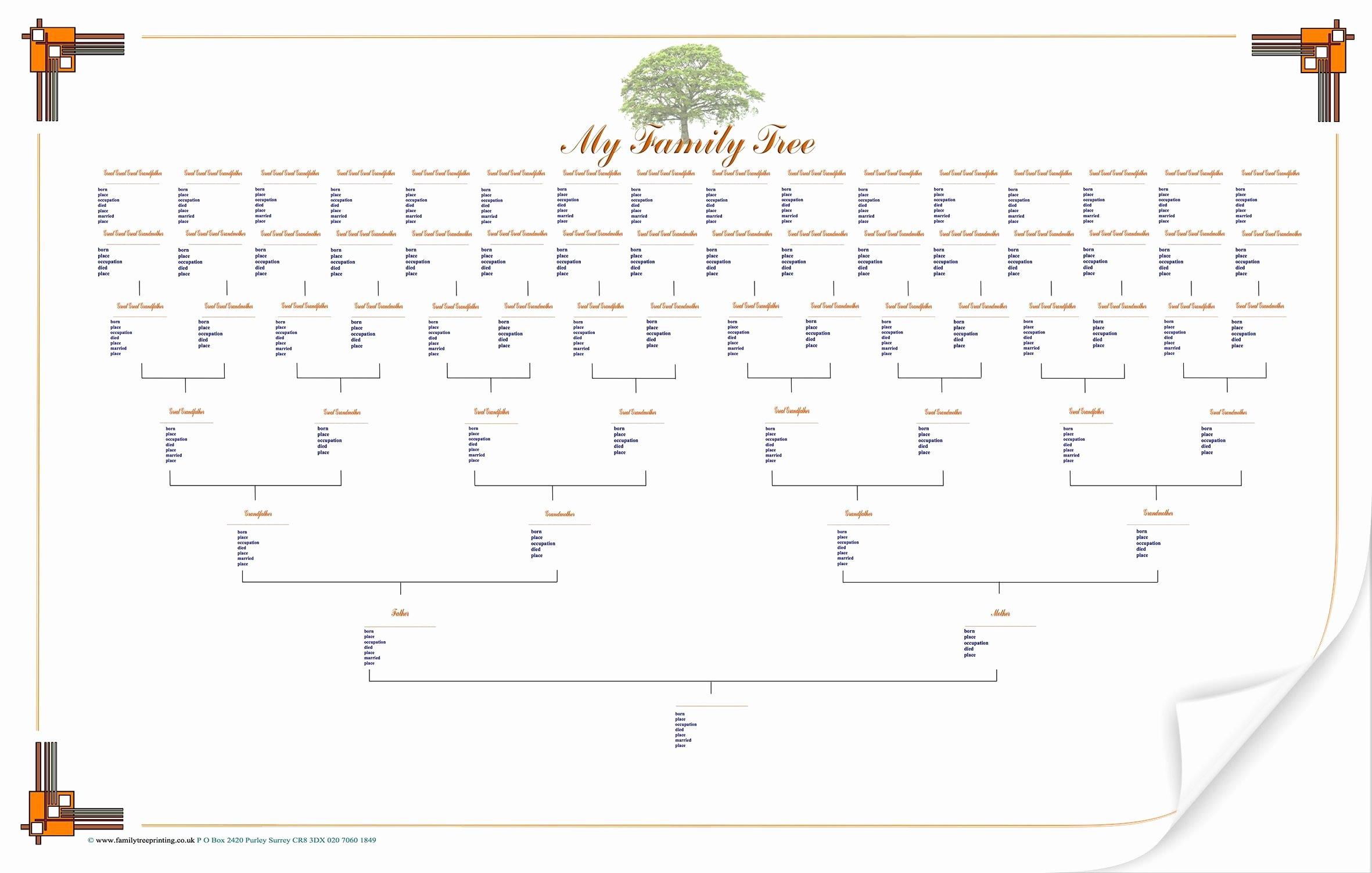 Family Tree Template Free Inspirational Blank Family Tree Chart Geneology