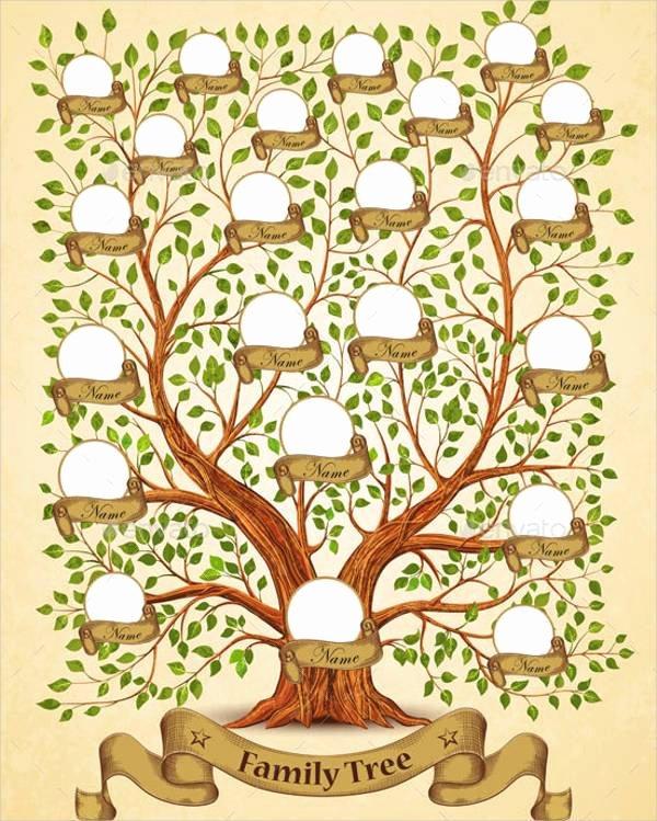 Family Tree Template Free Luxury 51 Family Tree Templates Free Sample Example format