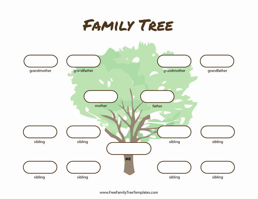 Family Tree Template Free Unique 3 Generation Family Tree Many Siblings Template – Free