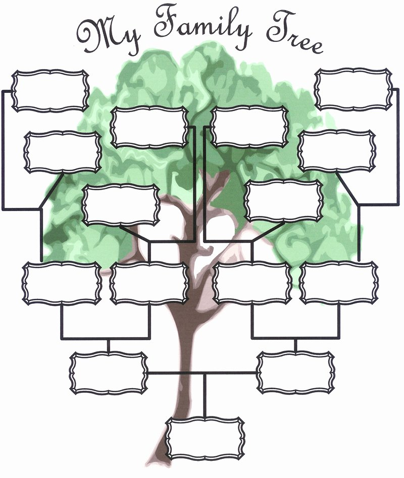 Family Tree Template with Photos Elegant Family Tree Templates