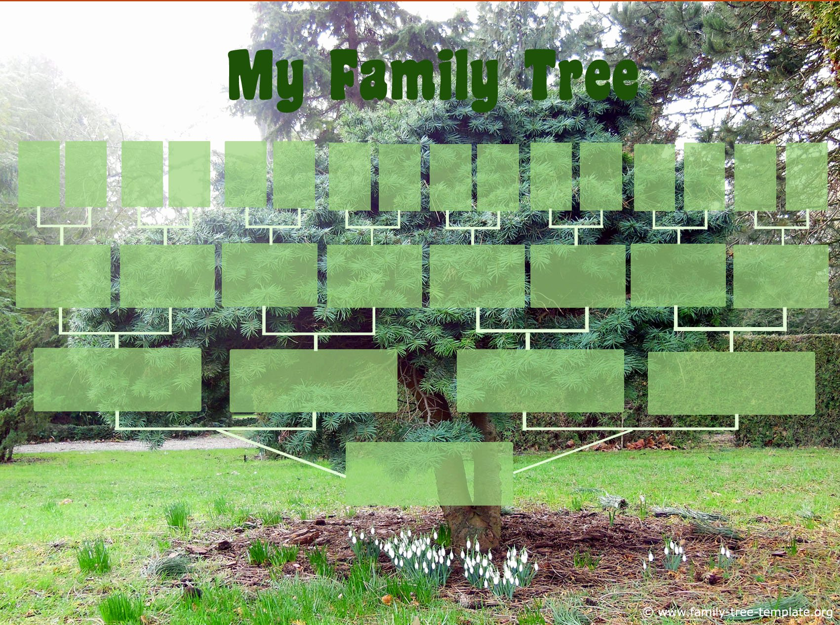 Family Tree Template with Photos Lovely Find the Right Family Tree Chart Free Genealogy forms
