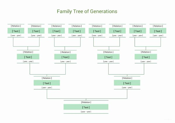 Family Tree Templates Excel New Simple Family Tree Template 27 Free Word Excel Pdf