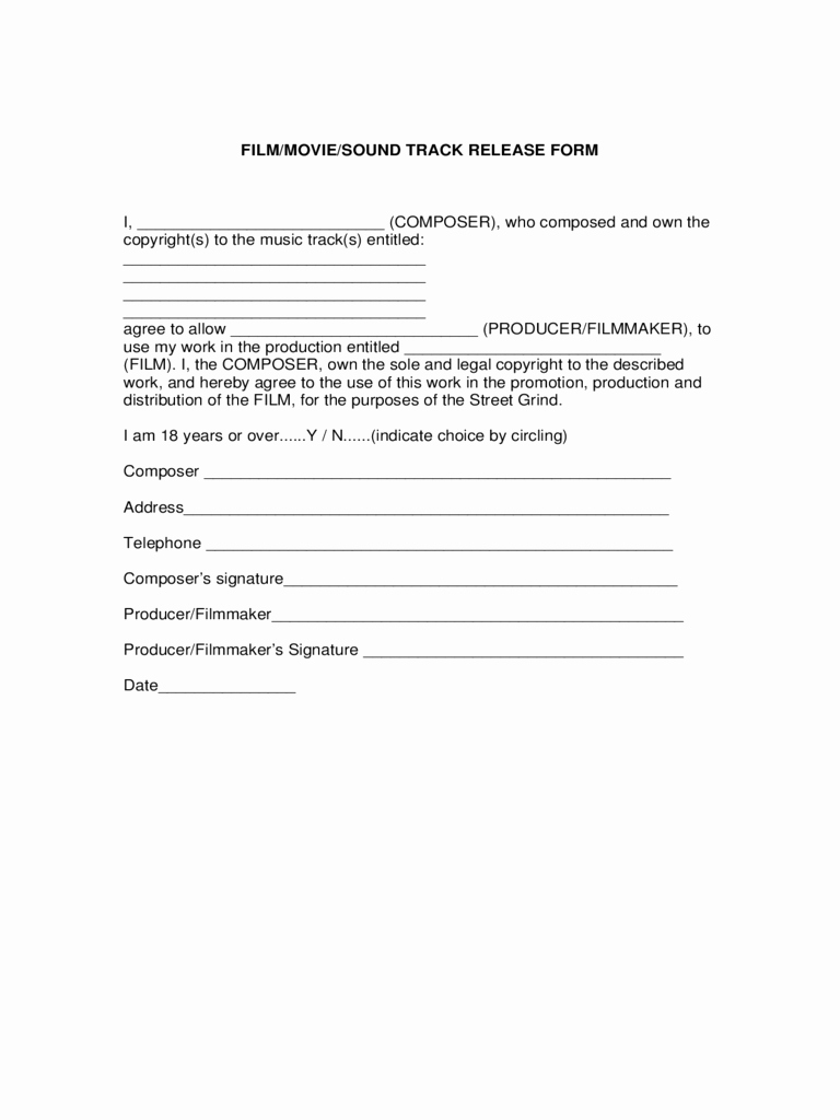 Film Release forms Templates Inspirational Release form 2 Free Templates In Pdf Word Excel