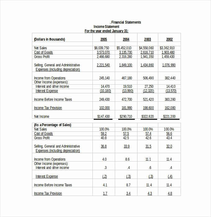 Financial Statement Template Word Elegant 30 Financial Statement Templates Pdf Doc