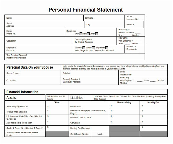 Financial Statement Template Word Inspirational Personal Financial Statement 11 Documents In Pdf Word