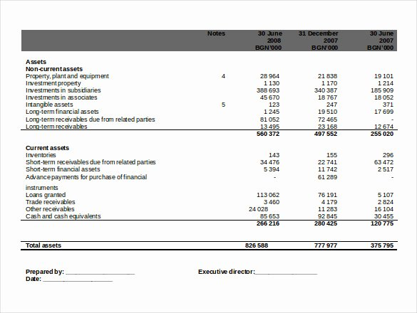 Financial Statement Template Word Unique 8 Word 2010 Statement Template Free Download