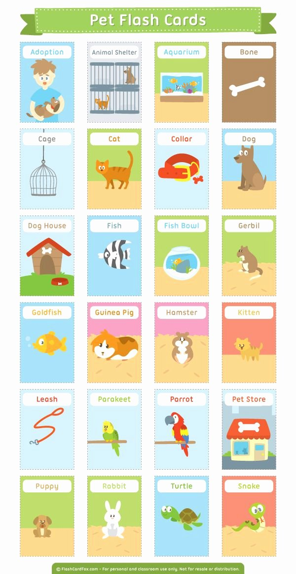 Flash Card Template Pdf Awesome 25 Best Ideas About Free Printable Cards On Pinterest