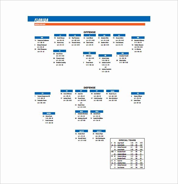 Football Depth Chart Template Excel Inspirational 13 Football Depth Chart Template Free Sample Example