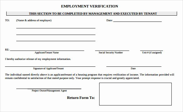 Free Employee Verification form Template Beautiful Employment Verification form 8 Download Documents In