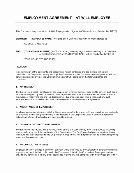 Free Employment Contract Template Word New Employment Contract Template