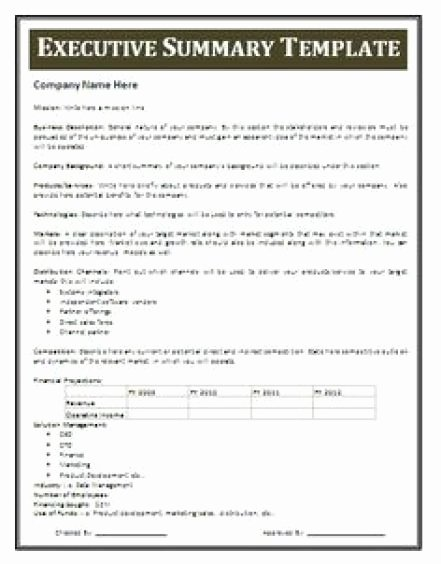 Free Executive Summary Templates Inspirational 13 Executive Summary Templates Excel Pdf formats
