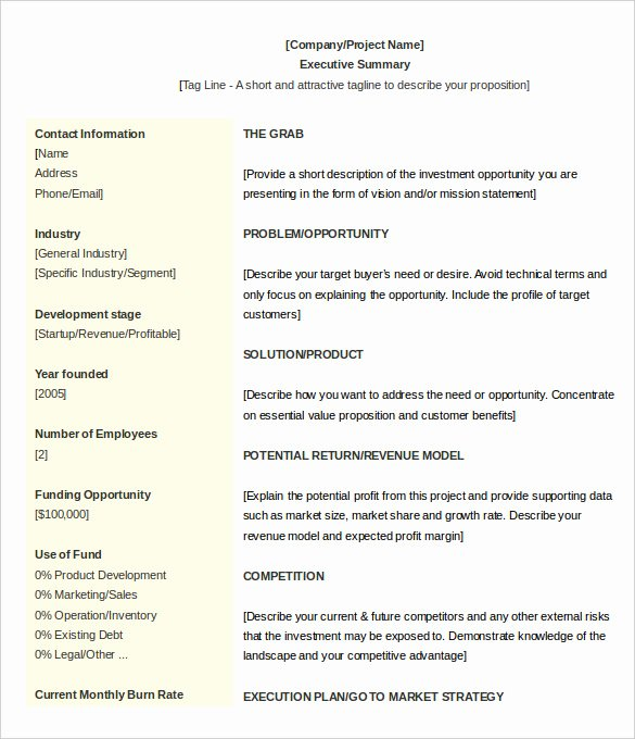 Free Executive Summary Templates Lovely 31 Executive Summary Templates Free Sample Example