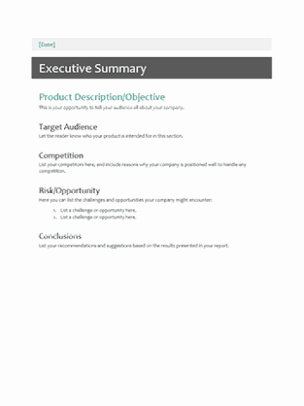 Free Executive Summary Templates Unique 43 Free Executive Summary Templates In Word Excel Pdf