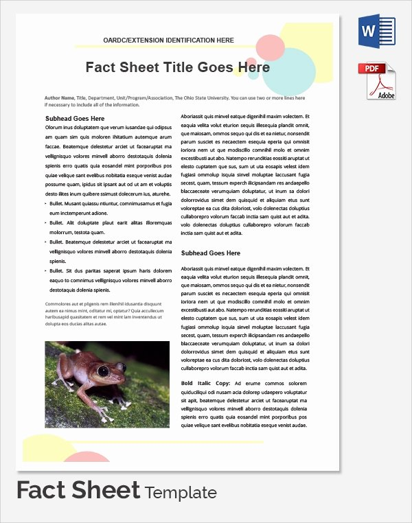Free Fact Sheet Template Awesome Sample Fact Sheet Template 21 Free Download Documents