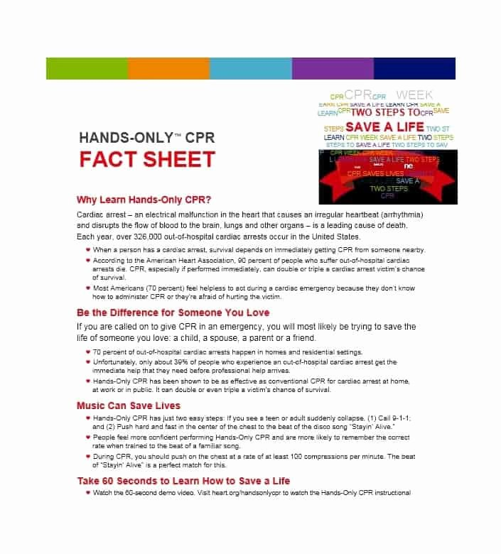 Free Fact Sheet Template Inspirational 10 Fact Sheet Templates Excel Pdf formats
