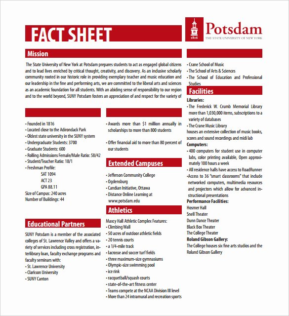 Free Fact Sheet Template Luxury 27 Fact Sheet Templates Pdf Doc Apple Pages Google