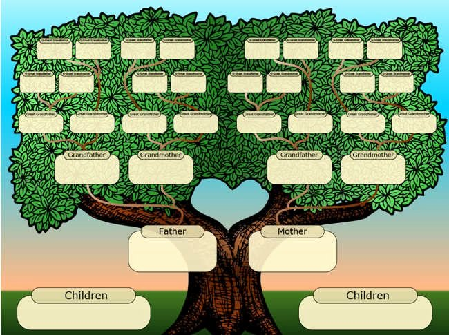 Free Family Tree Template Best Of 25 Best Ideas About Tree Templates On Pinterest