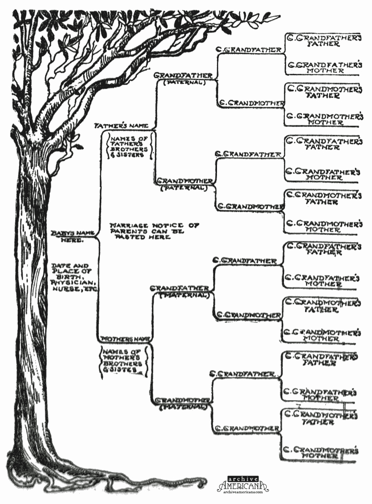 Free Family Tree Template Elegant Start A Genealogical Record for Your Family 1905