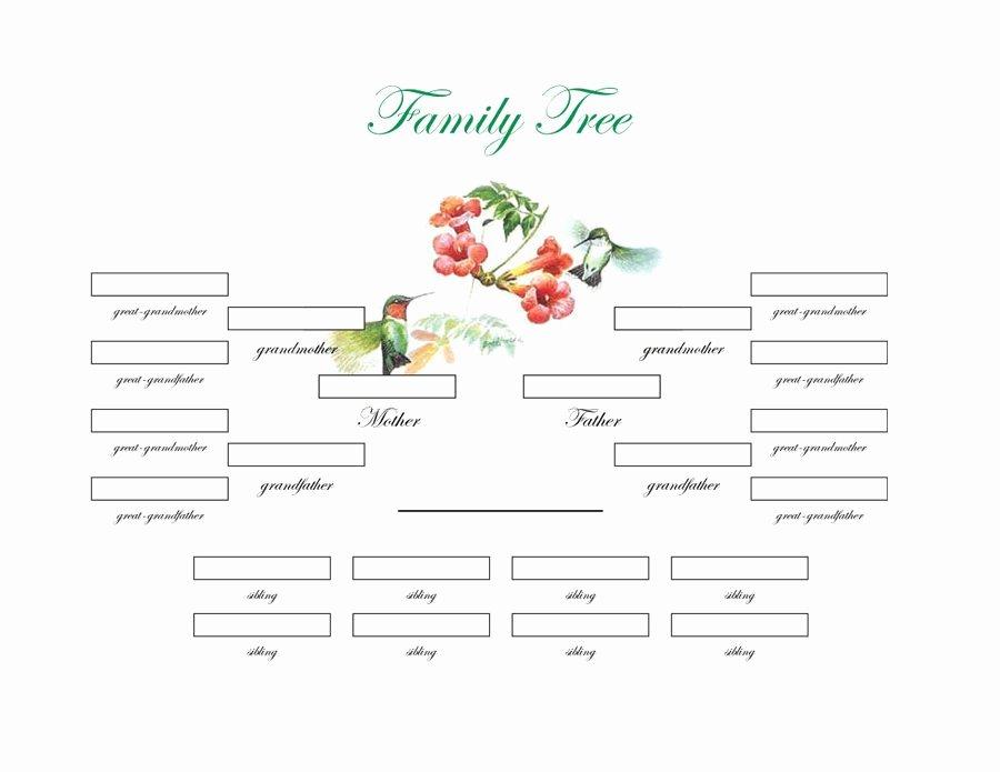 Free Family Tree Templates Beautiful Family Tree Diagram Printable
