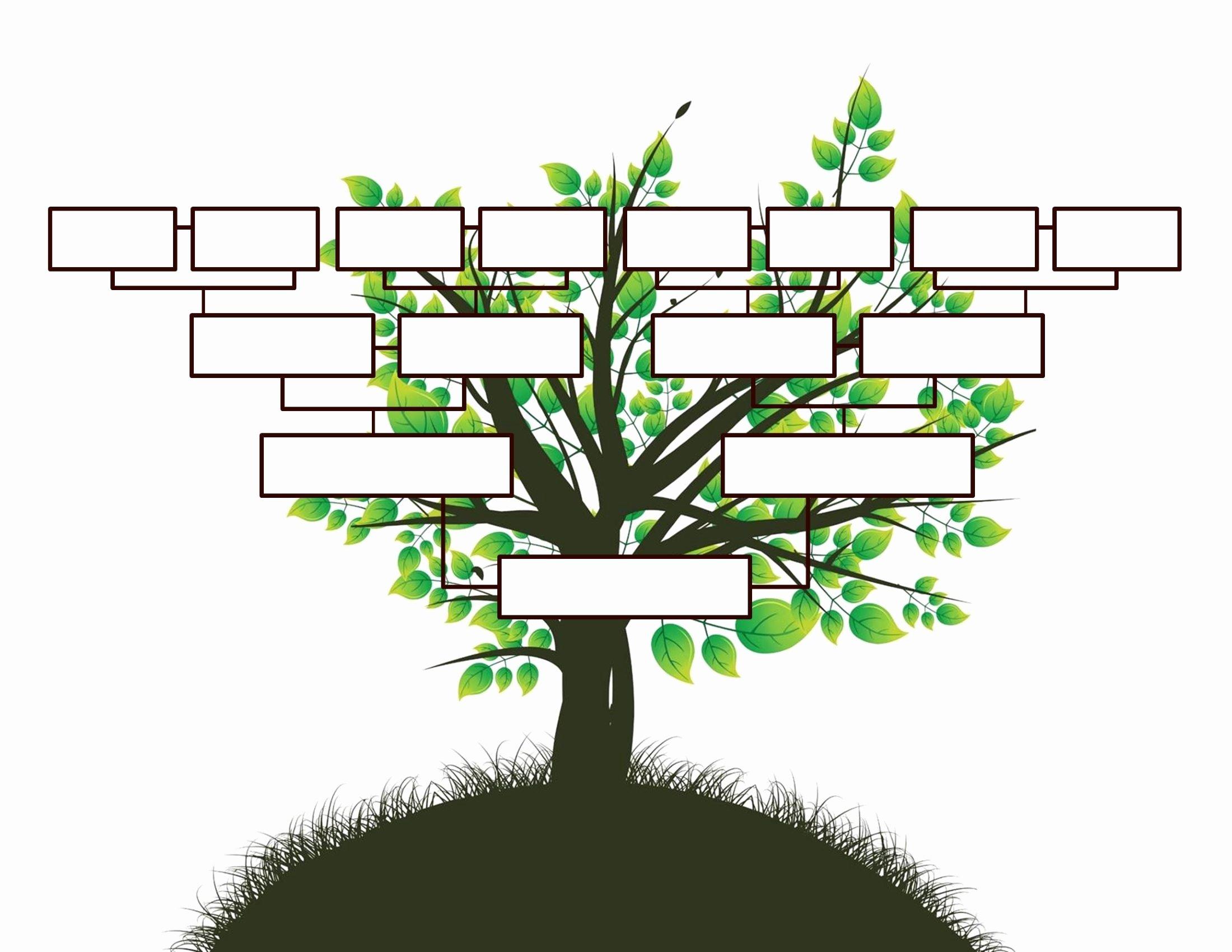 Free Family Tree Templates Elegant Free Editable Family Tree Template Daily Roabox