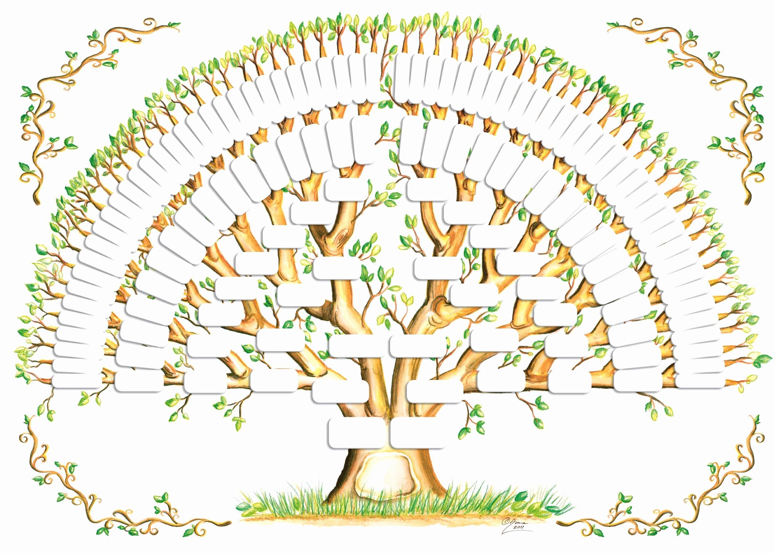Free Family Tree Templates Fresh 5 Generation Family Tree Template Tree Gallery
